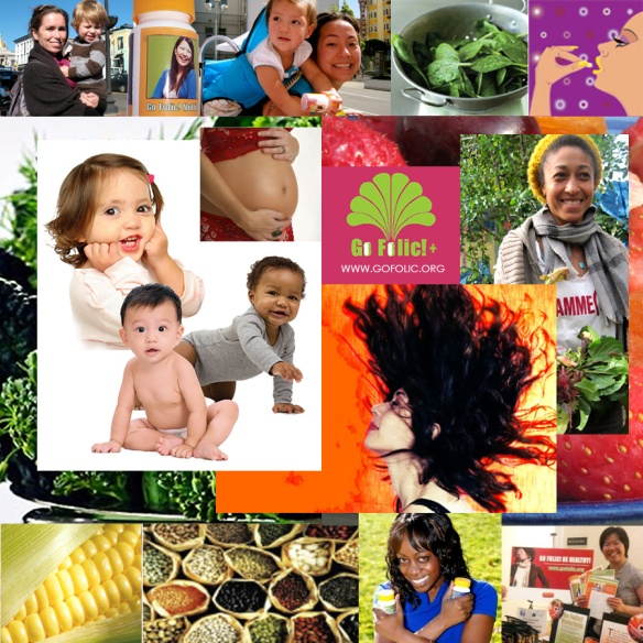 Go Folic!  Supporting Women's Health and the Health of their future babies and families by promoting folic acid supplementation, providing San Francisco teen and adult women with free vitamins, educating at health fairs, allowing women a voice in defining their health and health practices and celebrating women's strengh, life, and health