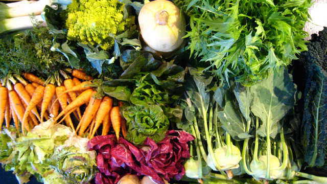Go folic be healthy info and discussion about women 39 s for What vegetables to grow